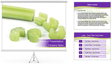 0000078073 PowerPoint Template