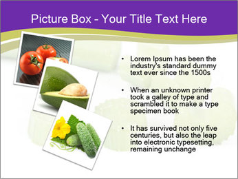 0000078073 PowerPoint Templates - Slide 17