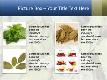 0000078074 PowerPoint Template - Slide 14
