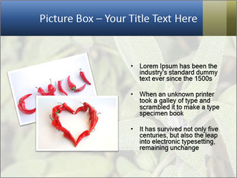 0000078074 PowerPoint Template - Slide 20