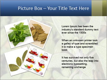 0000078074 PowerPoint Template - Slide 23