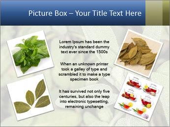 0000078074 PowerPoint Template - Slide 24