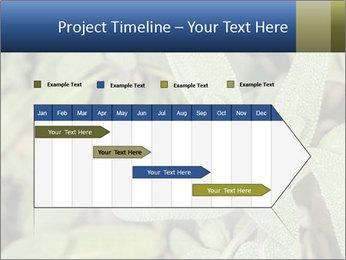 0000078074 PowerPoint Template - Slide 25