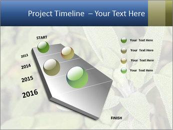 0000078074 PowerPoint Template - Slide 26