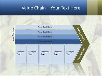 0000078074 PowerPoint Template - Slide 27