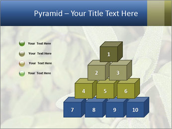 0000078074 PowerPoint Template - Slide 31