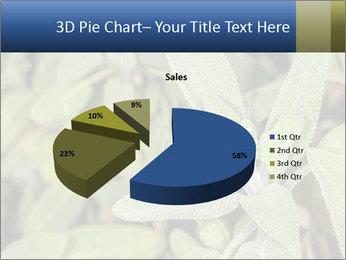 0000078074 PowerPoint Template - Slide 35