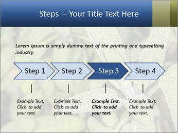 0000078074 PowerPoint Template - Slide 4
