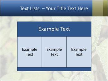 0000078074 PowerPoint Template - Slide 59