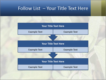 0000078074 PowerPoint Template - Slide 60