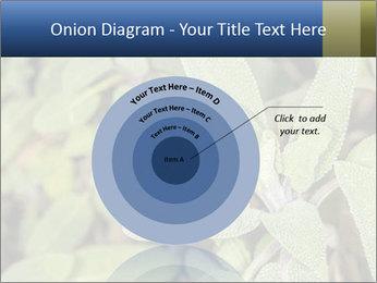 0000078074 PowerPoint Template - Slide 61