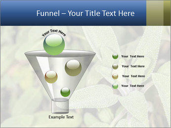 0000078074 PowerPoint Template - Slide 63