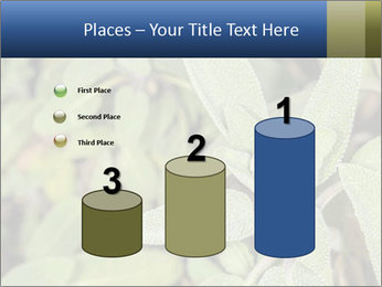 0000078074 PowerPoint Template - Slide 65