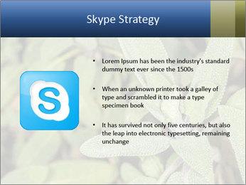0000078074 PowerPoint Template - Slide 8