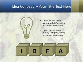 0000078074 PowerPoint Template - Slide 80