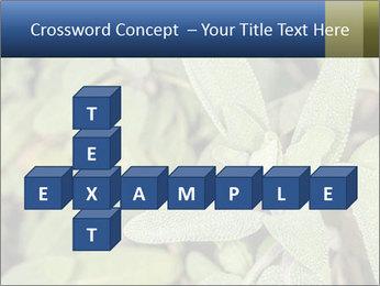 0000078074 PowerPoint Template - Slide 82