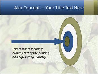 0000078074 PowerPoint Template - Slide 83