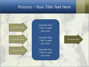 0000078074 PowerPoint Template - Slide 85