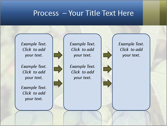 0000078074 PowerPoint Template - Slide 86
