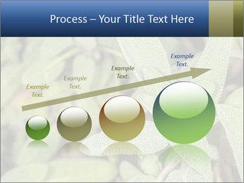 0000078074 PowerPoint Template - Slide 87
