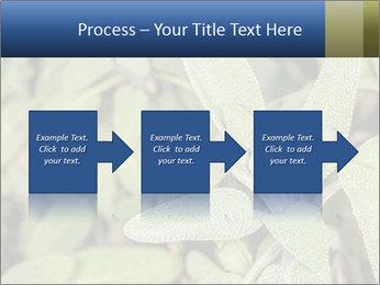 0000078074 PowerPoint Template - Slide 88