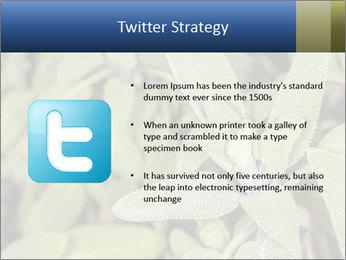 0000078074 PowerPoint Template - Slide 9