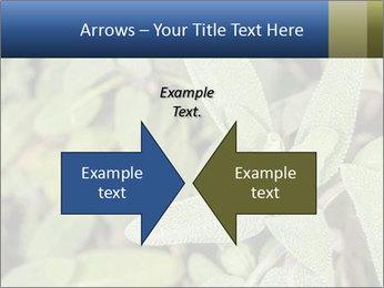 0000078074 PowerPoint Template - Slide 90