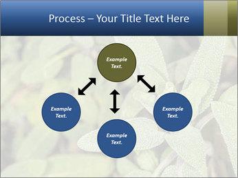 0000078074 PowerPoint Template - Slide 91