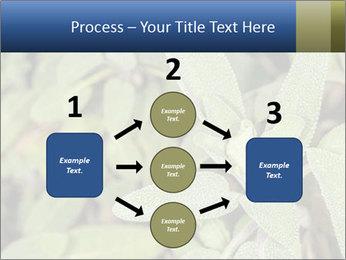 0000078074 PowerPoint Template - Slide 92