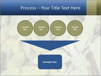 0000078074 PowerPoint Template - Slide 93