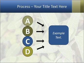 0000078074 PowerPoint Template - Slide 94