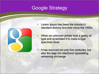 0000078075 PowerPoint Template - Slide 10