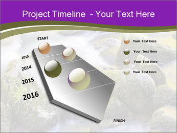 0000078075 PowerPoint Template - Slide 26