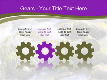 0000078075 PowerPoint Template - Slide 48