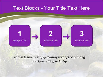 0000078075 PowerPoint Template - Slide 71