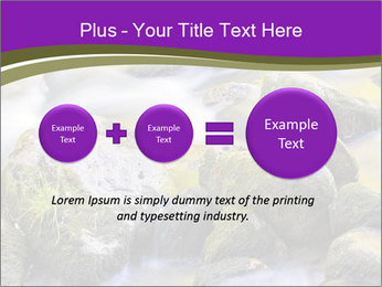 0000078075 PowerPoint Template - Slide 75