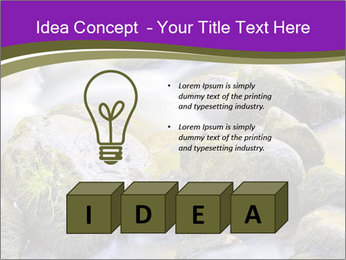 0000078075 PowerPoint Template - Slide 80