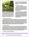 0000078075 Word Template - Page 4