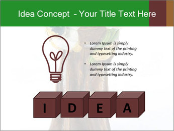 0000078076 PowerPoint Template - Slide 80