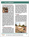 0000078077 Word Templates - Page 3