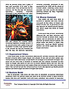 0000078084 Word Templates - Page 4