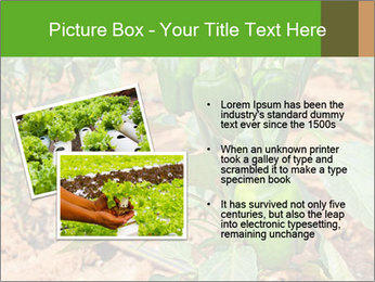 0000078088 PowerPoint Template - Slide 20