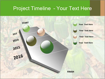 0000078088 PowerPoint Template - Slide 26