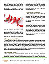 0000078088 Word Template - Page 4