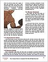 0000078091 Word Templates - Page 4