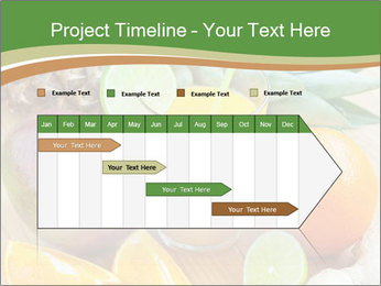 0000078092 PowerPoint Template - Slide 25
