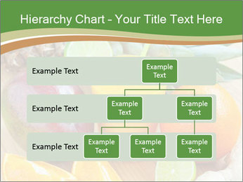 0000078092 PowerPoint Template - Slide 67