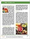0000078092 Word Template - Page 3