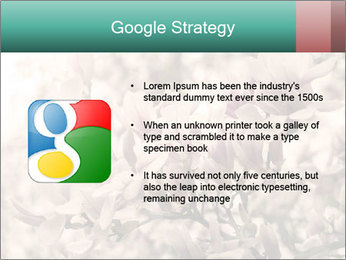 0000078096 PowerPoint Templates - Slide 10
