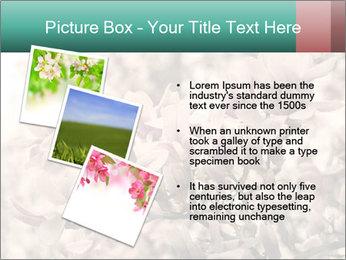 0000078096 PowerPoint Templates - Slide 17